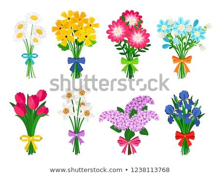 vert · vase · tulipes · grand · bouquet · coloré - photo stock © oksix