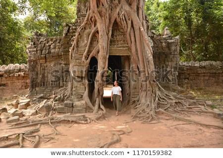 templo · selva · ruinas · pared · piedra · Asia - foto stock © alexeys