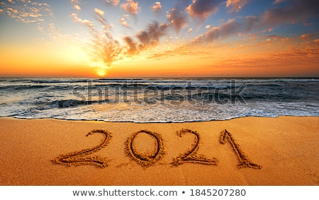 Christmas and New Year on the beach  Stock photo © tannjuska