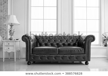 Black leather settee Stock photo © kjpargeter