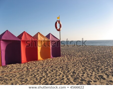 Wind on sand in Algarve beach, Portugal Stock photo © inaquim
