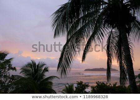 表示 サンタクロース 橋 島 コロンビア ストックフォト © jkraft5