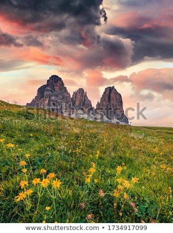 Dolomite mountains, Sella pass Stock photo © meinzahn