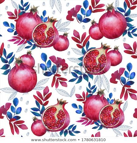 ripe pomegranate stock photo © zhekos