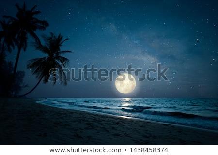 Luar praia luz canal noite Veneza Foto stock © rglinsky77