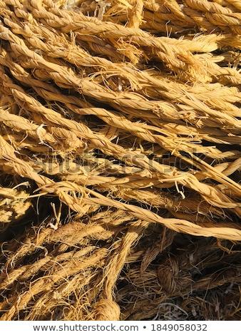 envelope on clothes rope stock photo © stevanovicigor