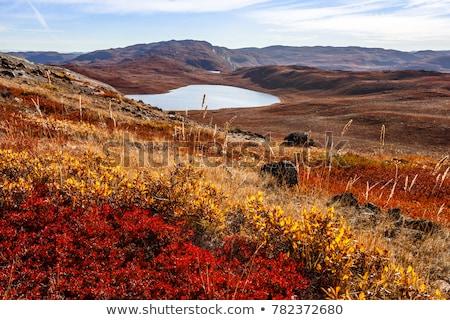ártico paisagem em torno de ilha dramático céu Foto stock © Arrxxx