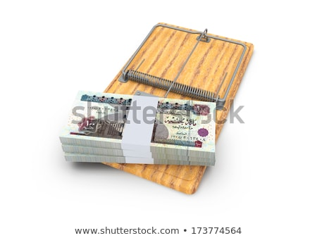 pound sterling bills in a mousetrap Stock photo © nito
