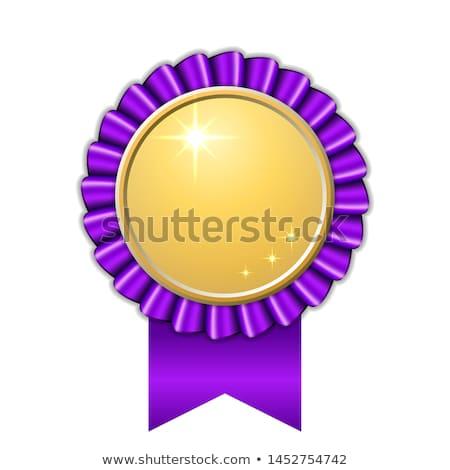 Certificado violeta vetor ícone projeto digital Foto stock © rizwanali3d