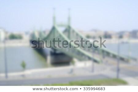 橋 · ブダペスト · ハンガリー · ぼやけた · ポスト · 生産 - ストックフォト © marco_rubino