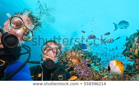 man and woman scuba diving stock photo © adrenalina