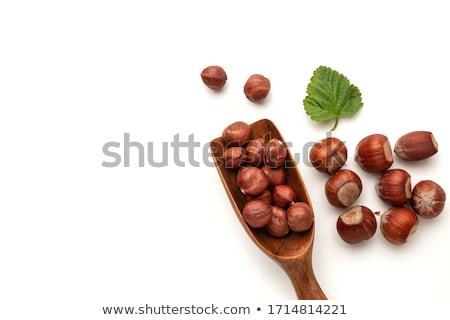 roasted hazelnuts in wooden spoon Stock photo © faustalavagna