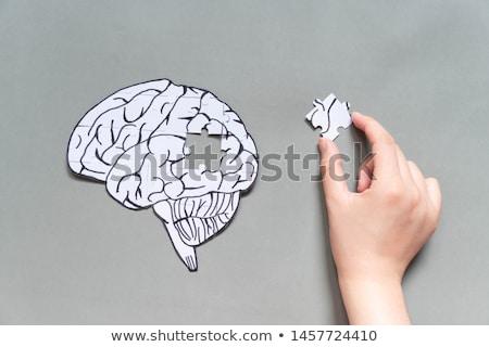 psychology puzzle stock photo © lightsource