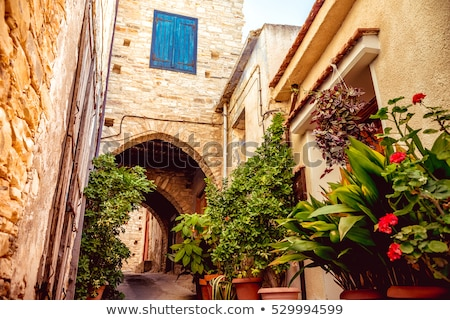 Cozy narrow street in Pano Lefkara village. Limassol District, C Stock photo © Kirill_M