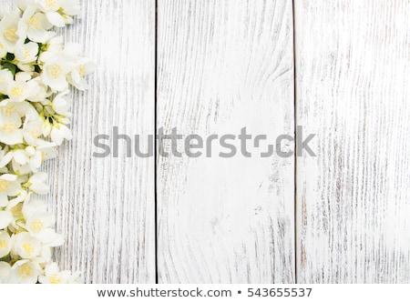 Fehér virág öreg fa asztal zöld tavasz fa Stock fotó © Kidza