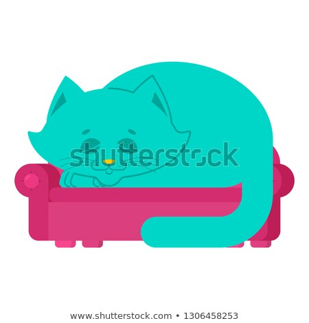 Big cat on couch asleep. huge pet on sofa Stock photo © popaukropa