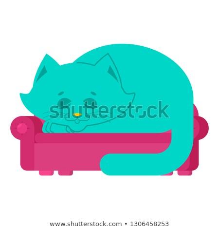 big cat on couch asleep huge pet on sofa stock photo © popaukropa
