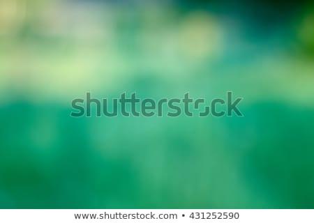 green filtered plant Stock photo © LightFieldStudios
