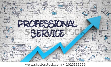Professional Service Drawn on White Brickwall.  Stock photo © tashatuvango