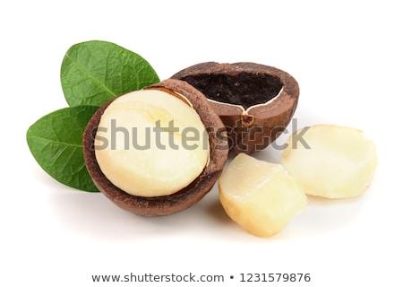 Noten geïsoleerd witte achtergrond zaad borst Stockfoto © karandaev