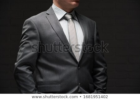 Businessman in gray suit  Stock photo © bluering