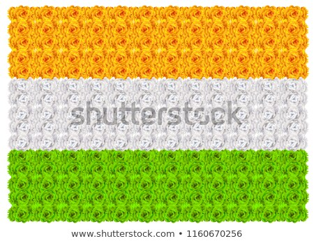 Flag of India floral background ornament mala Stock photo © orensila