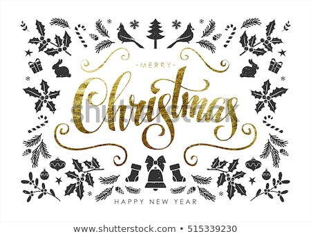Vrolijk christmas briefkaart frame maretak Stockfoto © robuart