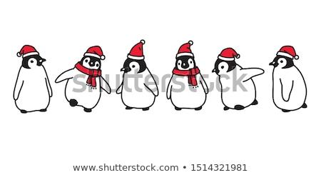Penguen buz logo ikon vektör dizayn Stok fotoğraf © blaskorizov