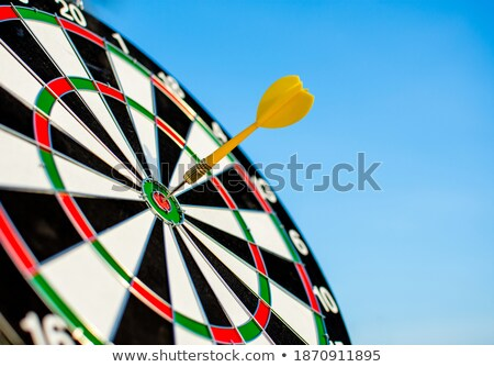Arrow hit the center of target. Business target achievement concept. Isolated on white background. 3 Stock photo © alphaspirit
