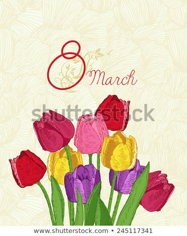 Tulips in the spring garden for 8 March vector greeting card Stock photo © LisaShu