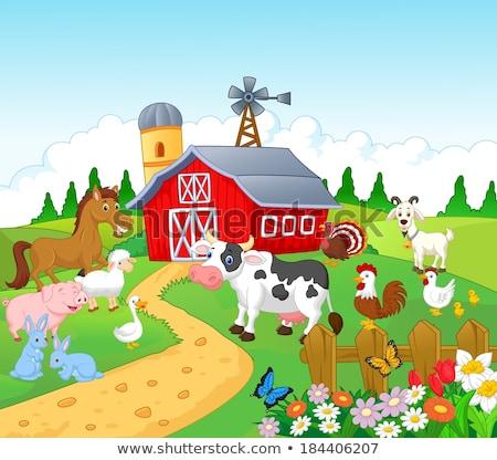 Foto stock: Fazenda · cena · porco · vacas · ilustração · menina