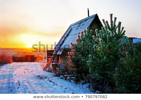 Foto stock: Cabina · nieve · campo · ilustración · casa
