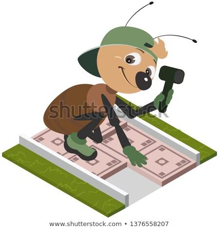 Karınca işçi kaldırım fayans vektör Stok fotoğraf © orensila