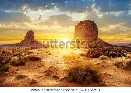 Thunderstorm at desert landscape Stock photo © bluering