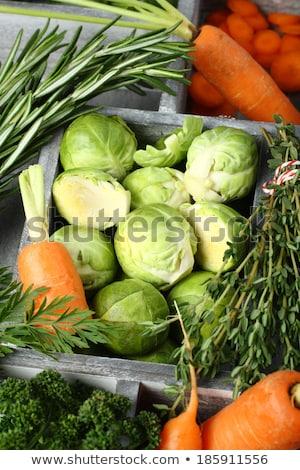 Vers ruw Brussel wortelen rosmarijn peterselie Stockfoto © Melnyk