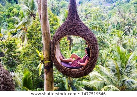 Femminile turistica seduta albero Foto d'archivio © boggy