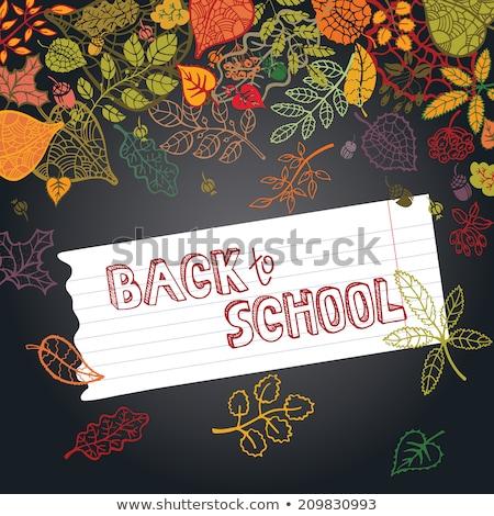 cartoon · krijt · vector · doopvont · groene · school - stockfoto © robuart