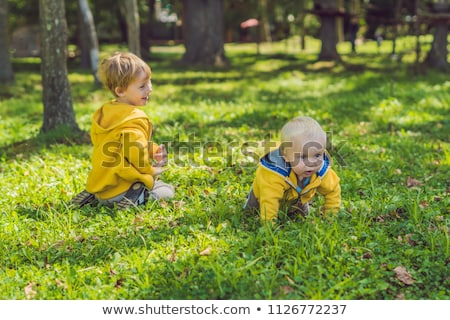 two happy brothers in yellow sweatshirts in the autumn park stock photo © galitskaya