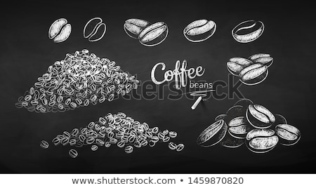 Tebeşir ayarlamak kahve çekirdekleri siyah beyaz vektör Stok fotoğraf © Sonya_illustrations