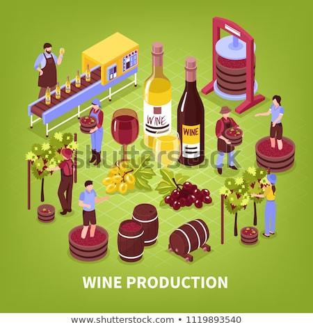 Vecteur isométrique Winery vin processus Photo stock © tele52