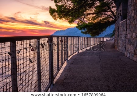 Caminho mar Croácia praia água árvore Foto stock © borisb17