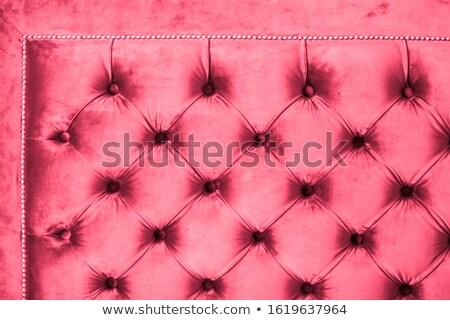 Rózsaszín luxus kanapé kárpit gombok elegáns Stock fotó © Anneleven