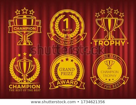 Kampioen beker eerste plaats overwinning sterren gordijn Stockfoto © robuart