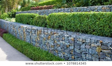 rock · muur · draad · achtergrond - stockfoto © pancaketom