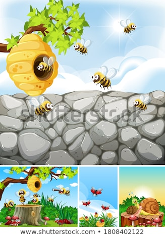 Set of different insects living in the garden background Stock photo © bluering