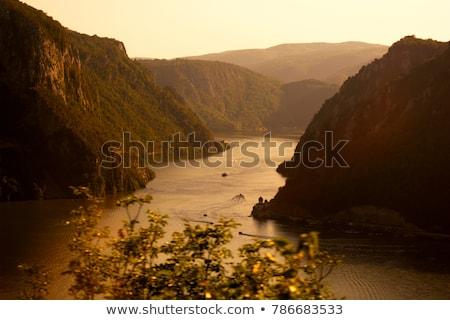 ドナウ川 峡谷 谷 自然 風景 木 ストックフォト © simply