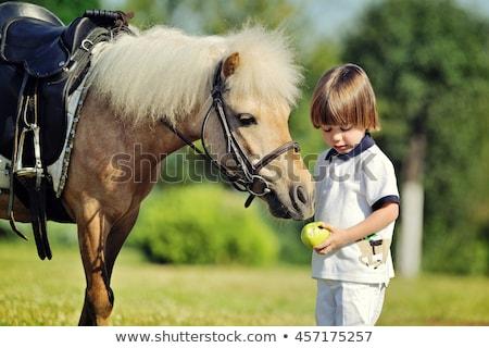少年 · ヘルメット · ライディング · ポニー · 笑顔 - ストックフォト © photography33