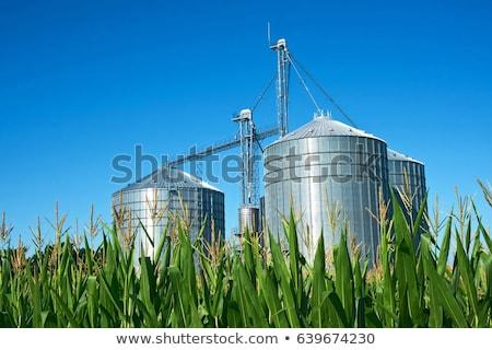 grain elevators stock photo © brm1949