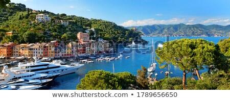 Сток-фото: Италия · яхта · парусного · морем