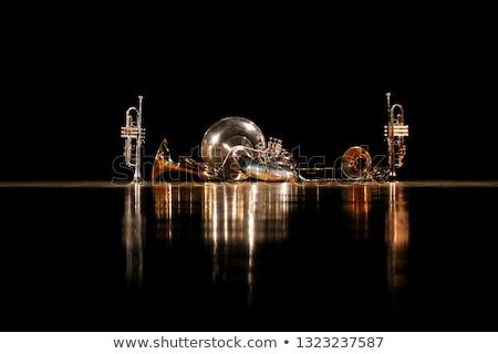 brass trumpet stock photo © vankad